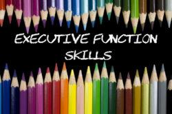 Introducing Executive Functioning Skills