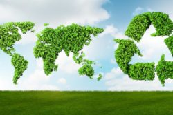 How Learning About Sustainable Business Has Changed the Way I Live